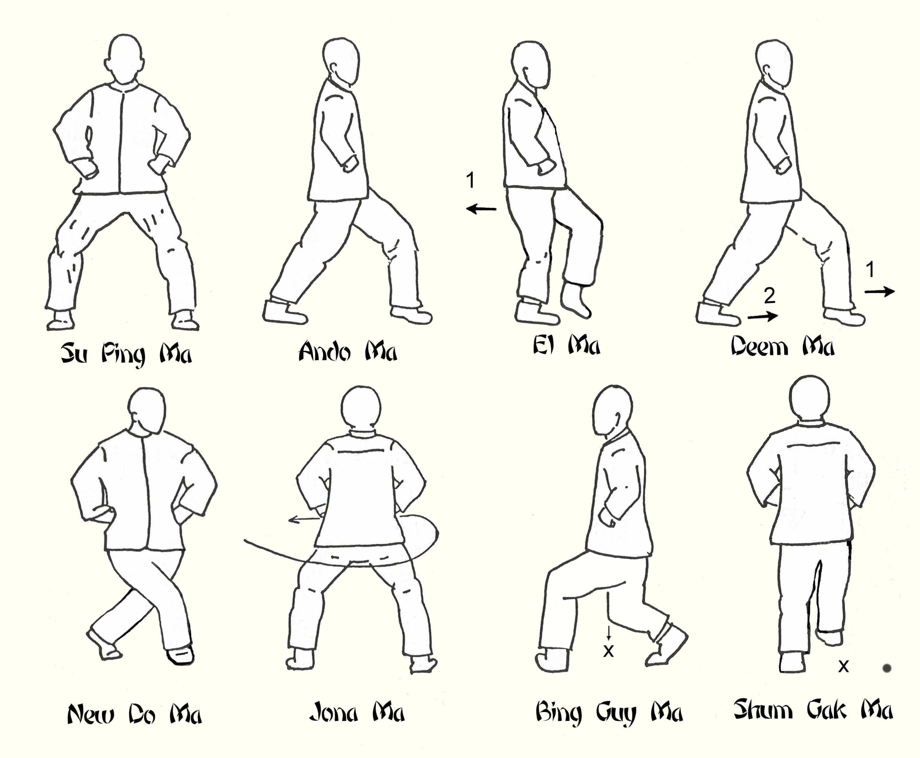 Basic Exercises Images