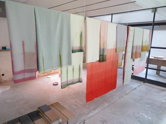 Sarah- Meyer / Laura-Fugman - unfolding-pigments