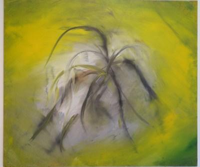 Jessica Skowroneck - Organism belonging to the vegetable kingdom