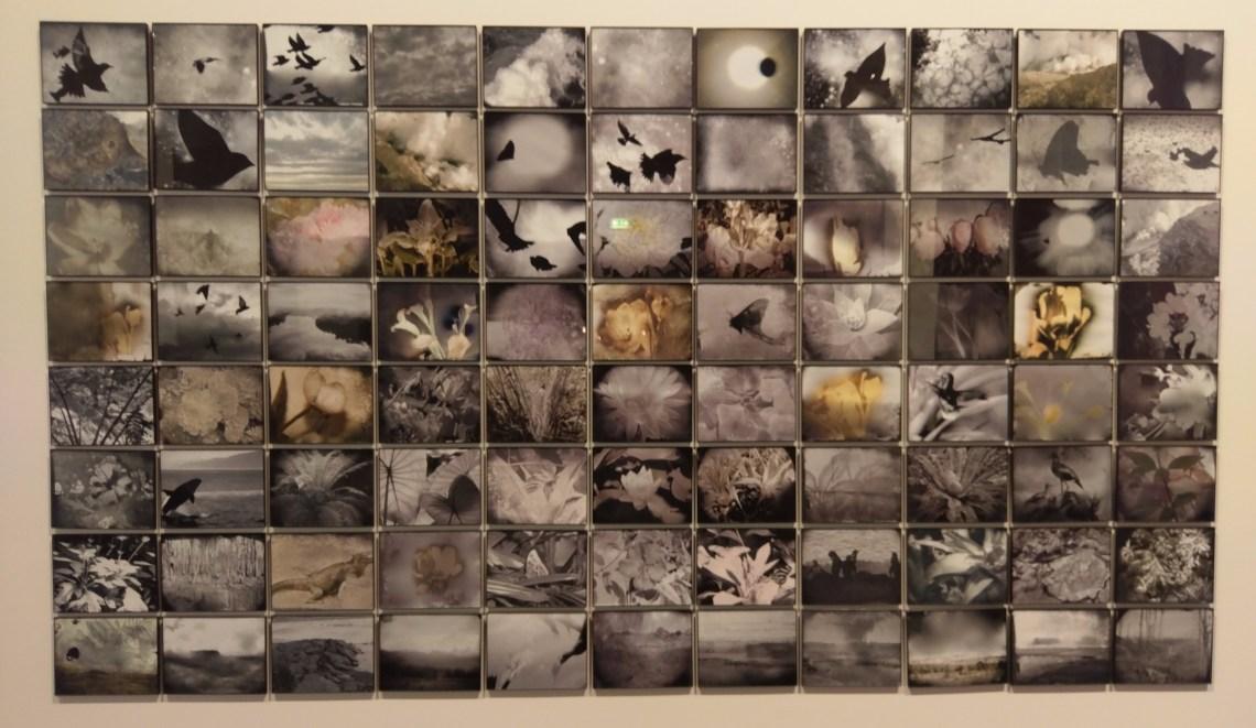 Michelle Stuart - Flight of Time (2016)