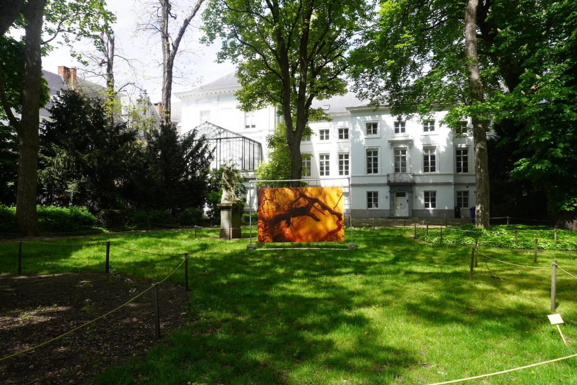 Tuin Koninklijke academie voor schone kunsten