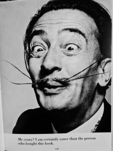 Dali's Mustache - Philippe Halsman