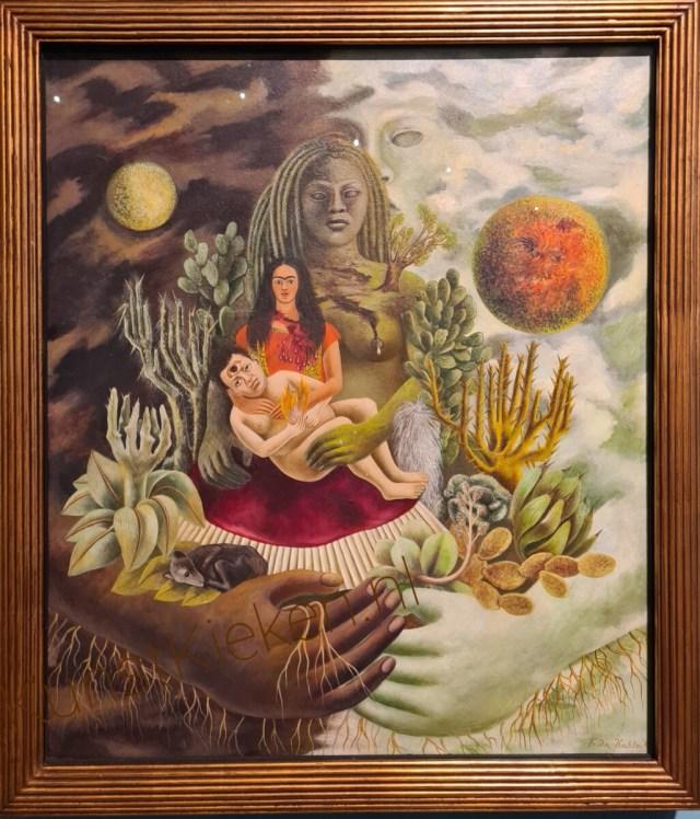Liefdesomhelzing vn het universum, de aarde, Diego, ikzelf en de heer Xolotl - 1949 - Frida Kahlo