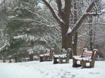 3-park-benches