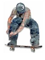 Scater, 102x80 cm, Fritz Stier