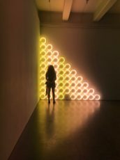 Dan Flavin untitled (to a man, George McGovern) 2, 1972