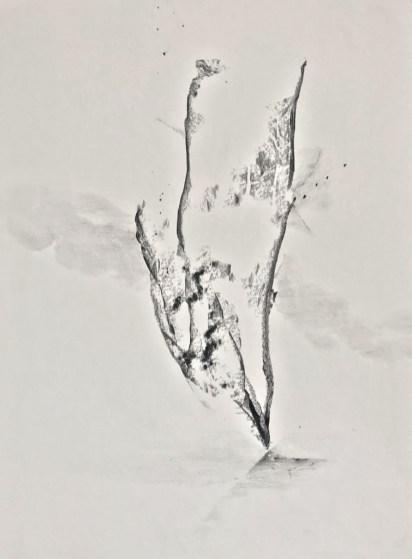 Descend. Liesje van den Berk. Grafietpotlood op papier. 30 x 40 cm.