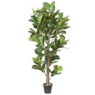HTT Decorations - Kunstplant Ficus Lyrata (190x50 cm) - Kunstplantshop.nl