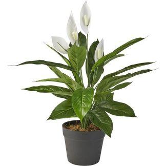 HTT Decorations - Kunstplant Spatiphyllum : Lepelplant 60 cm hoog - Kunstplantshop.nl