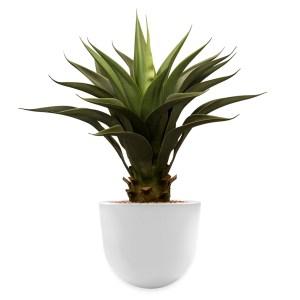 HTT - Kunstplant Agave vetplant in Eggy wit H70 cm - kunstplantshop.nl
