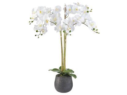 Orchidee / Phalaenopsis XXL 5-tak wit 90 cm hoog - Kunstplantshop.nl