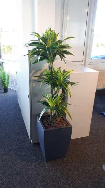 Kunstplanten op kantoor - Projectbeplanting - Kunstplantshop.nl