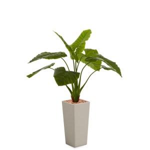 HTT - Kunstplant Philodendron in Clou vierkant taupe H165 cm - kunstplantshop.nl