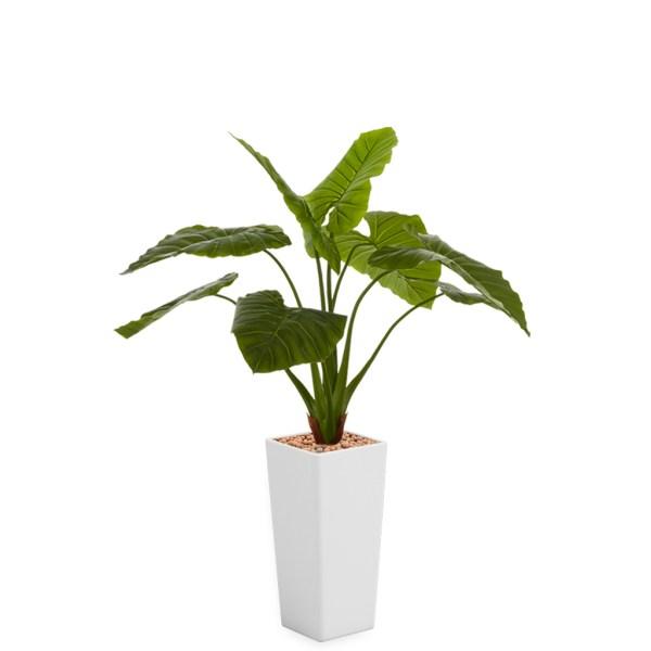 HTT - Kunstplant Philodendron in Clou vierkant wit H165 cm - kunstplantshop.nl