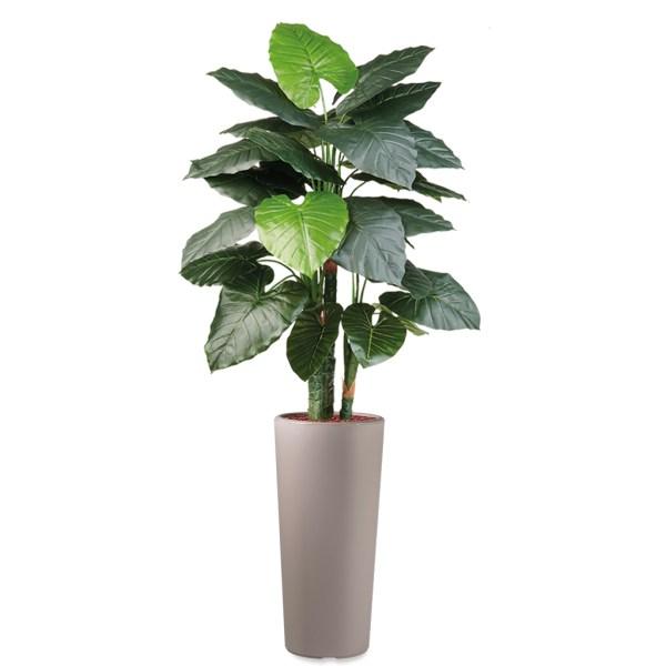 HTT - Kunstplant Philodendron in Clou rond taupe H185 cm - kunstplantshop.nl