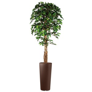 HTT - Kunstplant Ficus in Clou rond bruin H250 cm - kunstplantshop.nl