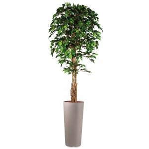 HTT - Kunstplant Ficus in Clou rond taupe H250 cm - kunstplantshop.nl