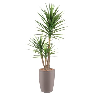 HTT - Kunstplant Yucca in Genesis rond taupe H200 cm - kunstplantshop.nl