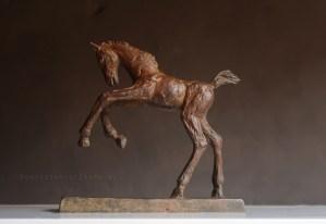 Paard Beeld Veulentje