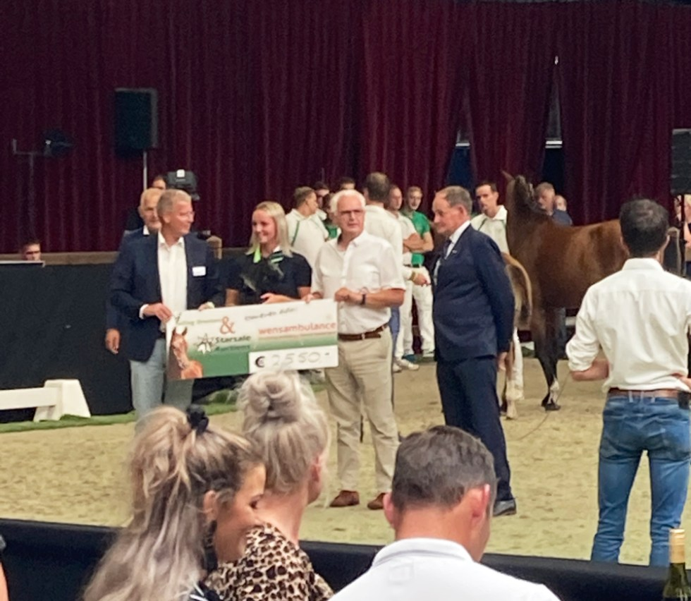Stichting Ambulance Wens Veiling