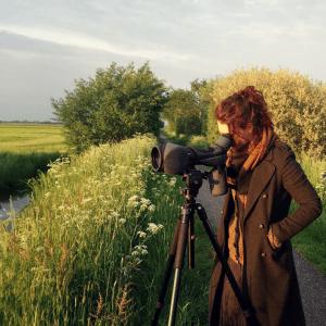 Patroon onder de loep - Sanne Driessen - Kunstzinnig Gezond - Kunstzinnige therapie Utrecht