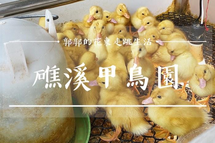 【宜蘭遊記】甲鳥園複合式養鴨農場┃能與小鴨做最近距離接觸的親子出遊景點┃