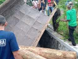 Keluar Jalur, Sopir Truk Muatan Kayu Glondong Tewas Terjepit