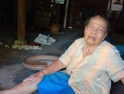 Gara – gara Pohon Tumbang, Janda Tua Didenda Pensiunan PNS Jutaan Rupiah
