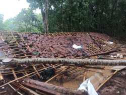 Tertimpa Pohon Sengon, Kandang Puyuh Roboh Rata Dengan Tanah