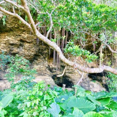 読谷村字牧原付近にあったという「農林隊構築壕跡」