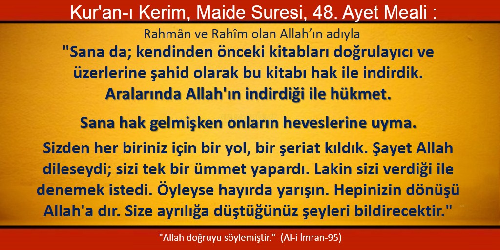 maide 48