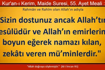 maide 55