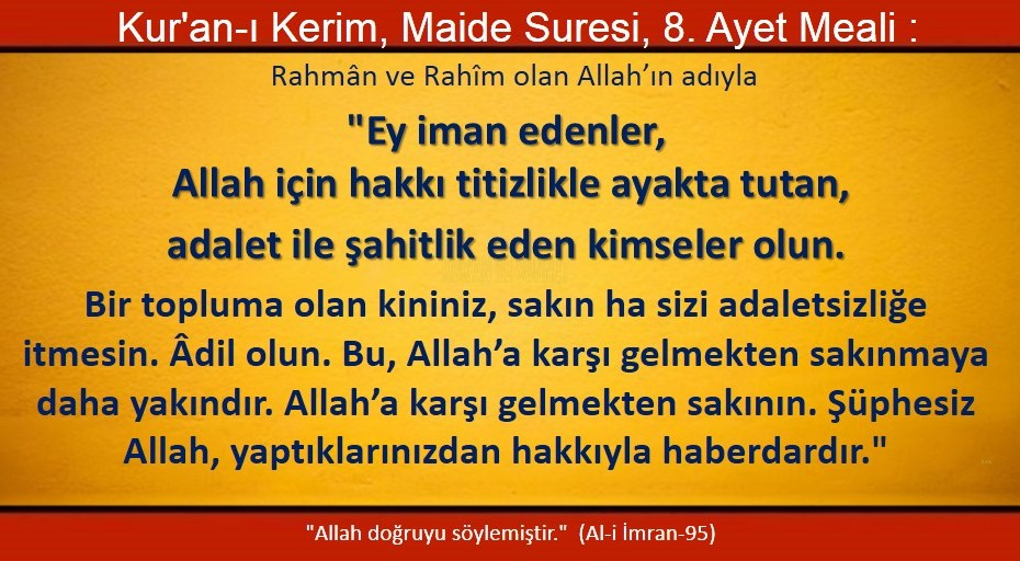 maide 8