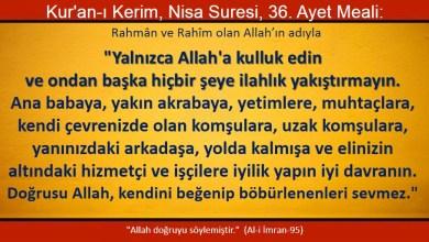 Photo of Yalnızca Allah'a kulluk edin ve ondan başka hiçbir şeye ilahlık yakıştırmayın.