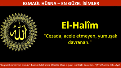 Photo of EL HALİM
