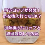 梅シロップ発酵