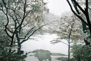 雪・冬景色