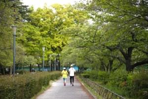 マラソン ジョギング