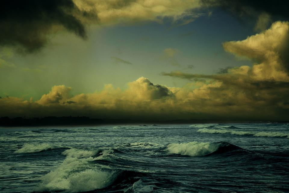 台風 停電 被害 水槽 海水魚 サンゴ ソフトコーラル 酸欠 停電 海水魚 回復 状況