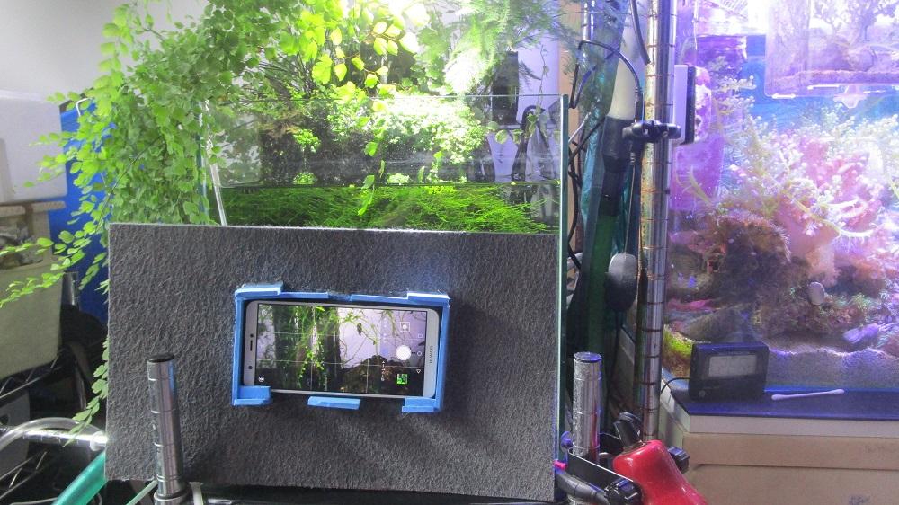 水槽撮影用スマホカバー使用イメージ