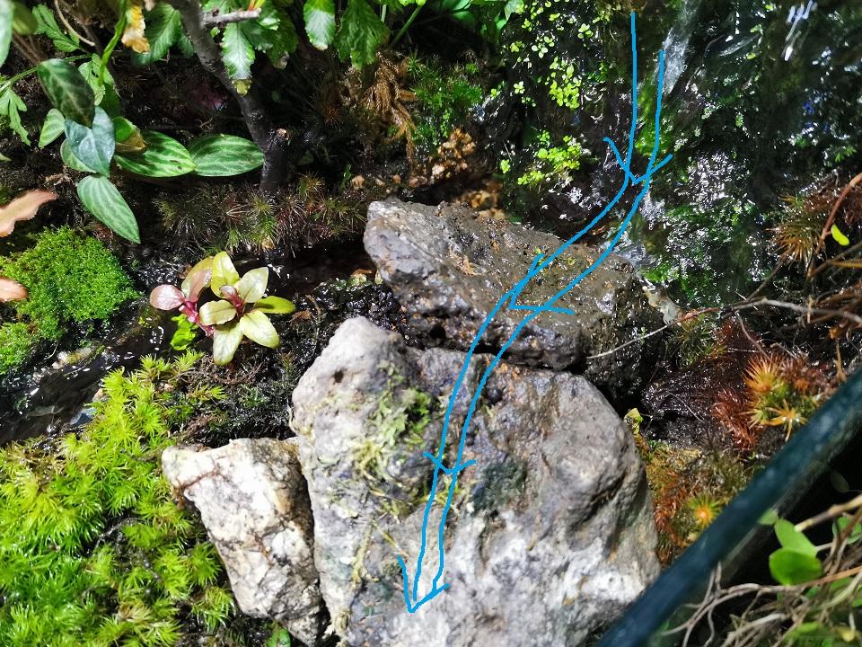 多段の滝の原型