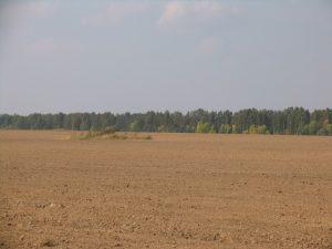 Uprawnienia w zakresie regulacji rolnych przekazano nie samorządom, tylko Narodowej Służbie Ziemi przy Ministerstwie Rolnictwa Fot. Archiwum ASRW