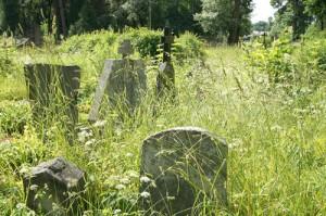 Jeden z najpiękniejszych w Europie cmentarzy bezpowrotnie niszczeje.<br/>Fot. Marian Paluszkiewicz