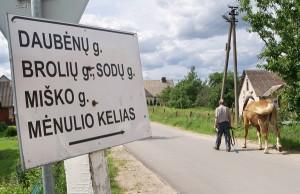 Za przykładem mieszkańców gminy szaternickiej poszły również inne gminy — awiżeńska, kowalczucka, czy (jak na zdjęciu) rudomińska Fot. Marian Paluszkiewicz