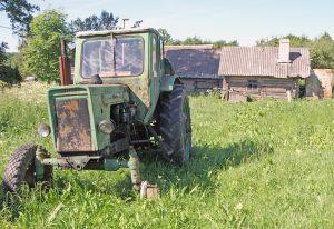 Dzisiejsze oblicze Białozorowszczyzny — kiedyś gęsto zaludnionej wsi, dziś niemal wymarłej Fot. Marian Paluszkiewicz