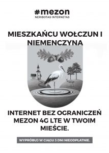 mezon (internet)