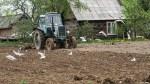 Majowe przymrozki i susza szkodzą uprawom