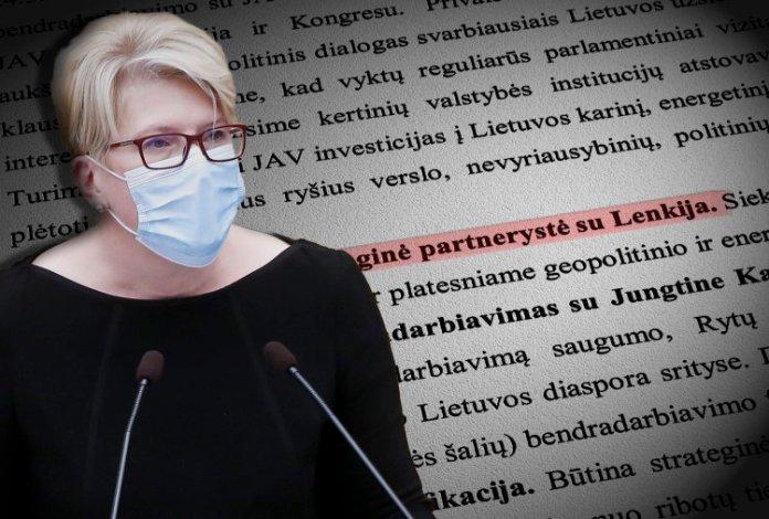 Rząd Šimonytė ma plany wobec Polaków — znamy szczegóły proponowanego programu
