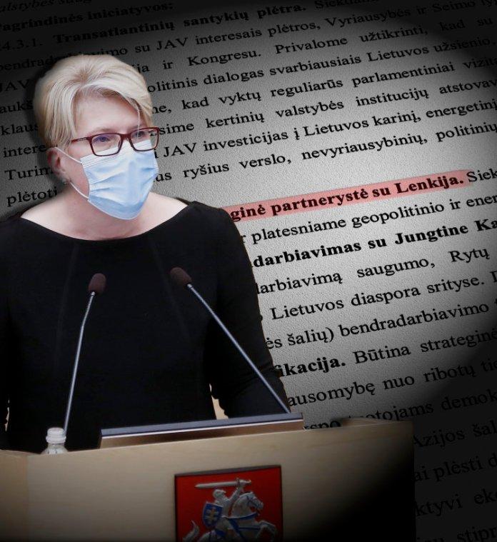 Ingrida Šimonytė przemawia w Sejmie Republiki Litewskiej, w tle program jej rządu z wyróżnionym punktem o partnerstwie strategicznym z Polską.