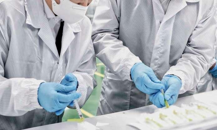 W laboratoriach wkrótce nowe odczynniki — pozwolą znajdować niebezpieczne odmiany wirusa